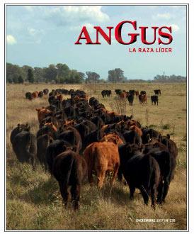 Revista Angus Nº 278 - diciembre 2017