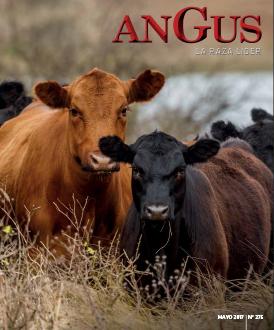 Revista Angus Nº 275 - mayo 2017